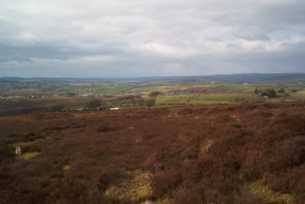 Llanllwni Mountain